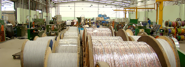 Coopersalto busca a certificação para atestar que suas práticas de produção atendem normas internacionais