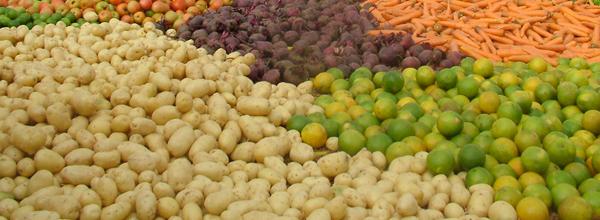 Segundo a ONU, 38% da produção de alimentos do Brasil é de responsabilidade de pequenos produtores rurais