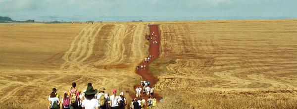 Período de festas faz bem para o turismo rural (Foto: Divulgação / Anda Brasil)