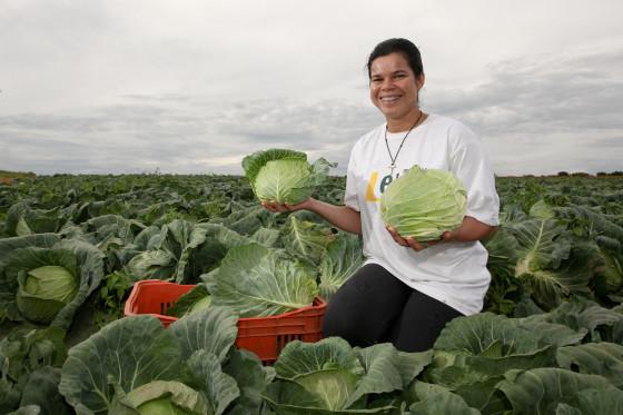 Agricultura Familiar Alimentacao Escolar